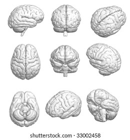 CG style 3D model of brain in various angles.
