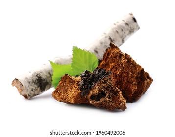 Chaga-Pilzstücke mit Birkenblättern einzeln auf weißem Hintergrund.