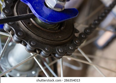 Chain of bicycle in wheel.