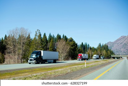 The chain of modern colorful semi trucks of different models and manufacturers with trailers moving cargo one after the other on the flat straight interstate highway with trees in sunny California.