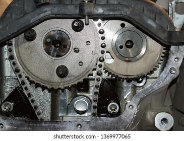 Chain of timing and two sprockets of camshafts. Fragment of the gas distribution system of the automobile engine.