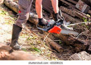 Chainsaw in male hands. Sawing wood. Flying dust