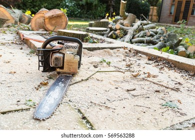 Chainsaw on a patio covered in sawdust and chopped, cut wood from a felled oak tree on grass trunks and branches following tree surgery.