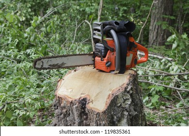 Chainsaw on a stump of a recently sawed down tree