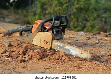 chainsaw and wood chips