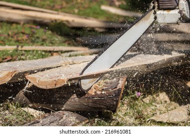 Chainsaw at work