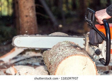 Chainsaw Tree Stock Photo (Edit Now) 599464646 - Shutterstock