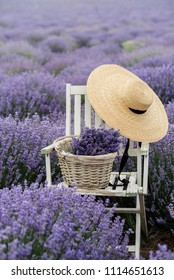 chair with a basket and hat in a lavender field