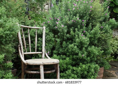 Chair In Garden Old Wooden The Park Bench Under Overgrown Bush