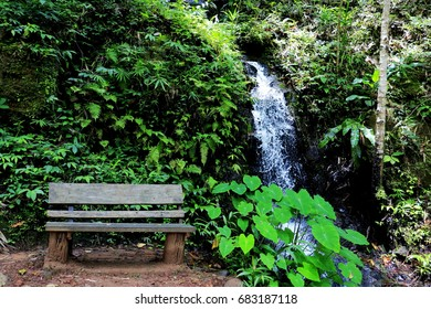 chair and waterfall.They are in forest .Nation park Thailand.