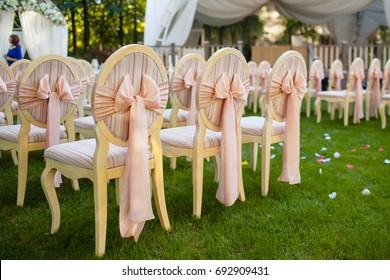 The chairs with bows on the wedding ceremony.