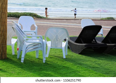 Chairs and plank beds on the grass near the sea