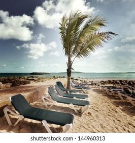 Chairs In A Tropical Beach