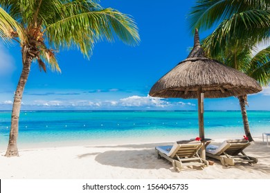 Chairs and umbrella at beach with palms. Holiday banner