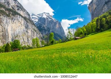 Chalets on green mountain slope. Swiss Alps landscape. Lauterbrunnen, Switzerland, Europe.