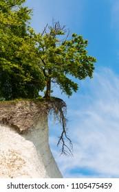 chalk cliffs at the Jasmund National Park at Ruegen, Germany