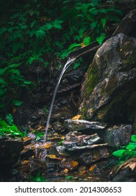 CHAMBA, INDIA - Jun 20, 2021: A natural view of spring water flowing from a piece of bamboo in the forest of Chamba, India
