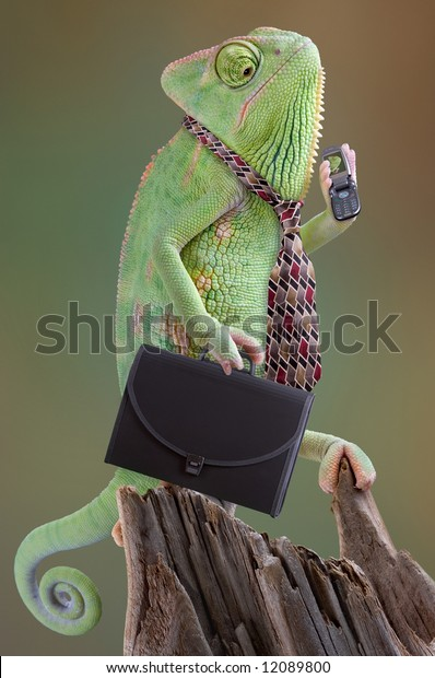 A chameleon businessman is calling an associate on his cell phone on the way to work.