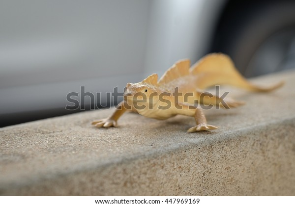 Chameleon toy model.