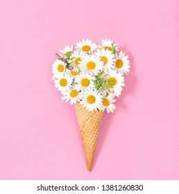 Chamomile daisy flowers in ice cream waffle cone on pink paper background. Floral flat lay