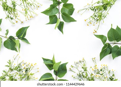 Chamomile flowers and green leaves on white background, flat lay, top view