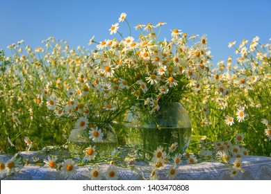 Chamomile in a glass vase