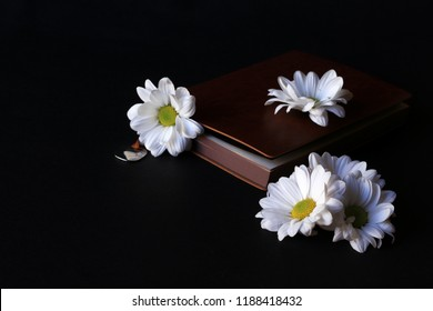 Chamomile and leather cover book on black background.