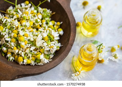 Chamomile oil ,  chamomile essential oil bottles with chamomile flowers