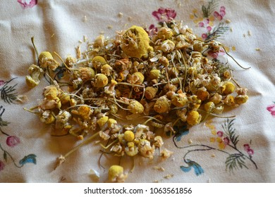 Chamomile on Floral Fabric Background