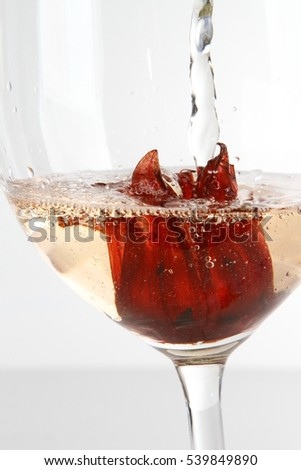 Champagne Cocktail Hibiscus Flower On White Stock Photo Edit Now