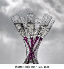 Champagne Flutes in the Rain