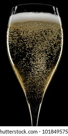 Champagne  Glass of Champagne  Christmas