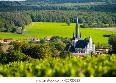 Champagne vineyards in the Cote des Bar area of the Aube department near to Les Riceys, Champagne-Ardennes, France, Europe