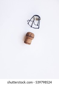 champan cork and stopper isolated. white background