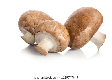 Champignon mushrooms isolated on white background