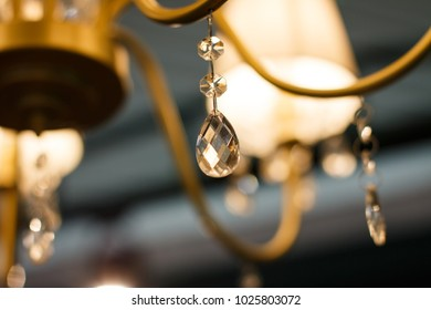 chandeliers, paws, sconces, lighting in the interior