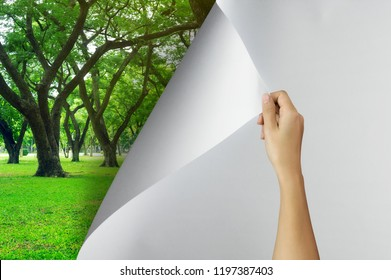 Change concept, Woman hand turning blank paper page to Tree garden environmentally friendly, changing reality, hope inspiration,environmental protection, change weather, environmental campaign.
