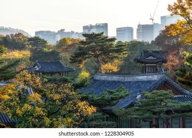 Changgyeonggung palace taken during autumn season fall foliage in Seoul, South Korea