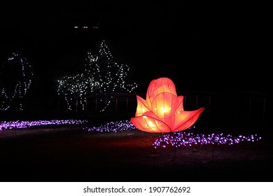 Changhua County , Taiwan - Jan 30th,2021:lotus lantern of Lantern Festival at Mt. Bagua Great Buddha Scenic Area