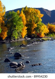 Changing leaves along a river in the Colorado Rocky Mountains