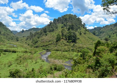 Chania River in Aberdare Ranges against a mountain background, Kenya