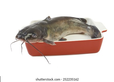 Channel catfish in a ceramic baking dish cooking isolated on white background