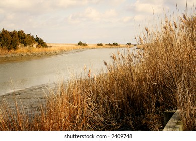 Channel leading out through the marsh and sea oats to Delaware Bay.