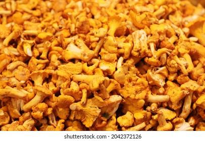 Chanterelle finferli mushrooms sold in the food market