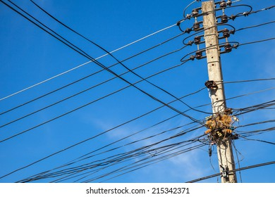 chaotic wire with nest on pole and blue sky background