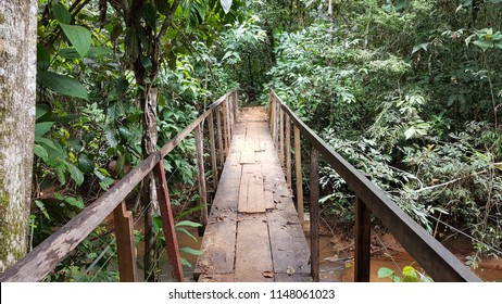 Chapada dos Guimaraes, Brazil. June 2018. Trail in the Chapada dos Guimaraes National Park with a footbridge over a stream composing the image.