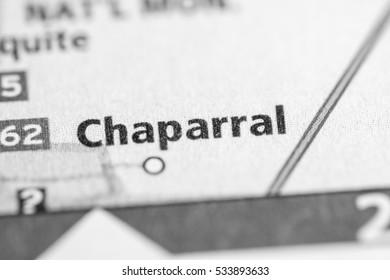 Chaparral. Texas. USA