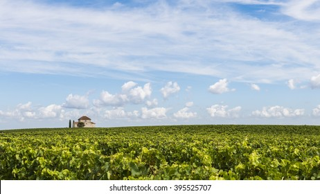 Chapel in vineyard near Saint Estephe in the Medoc, France, near the Gironde.