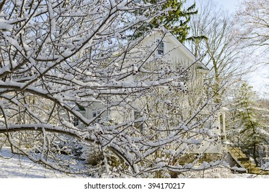 CHAPPAQUA, NEW YORK - MARCH 21 . A snowstorm on the first day of Spring blankets Westchester County covering trees already starting to bud after a warm winter on March 21, 2016 in Chappaqua, NY, USA.