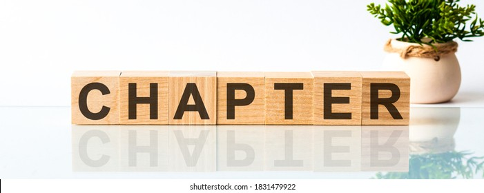 Chapter word written on wood block. Chapter motivation text on wooden blocks business concept white background. Front view concepts, flower in the background.